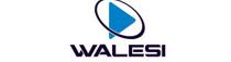 Walesi TV